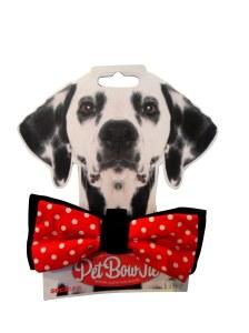 pet bow tie god